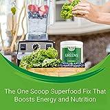 Super Greens   #1 Green Superfood Powder