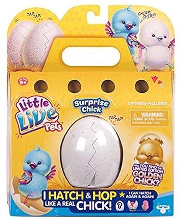 Amazon.com: Little Live Pets Pollito sorpresa: Little Live ...