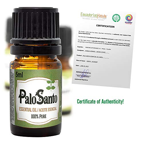 Palo Santo Essential Oil | 100% Pure, Undiluted, Natural Aromatherapy, 5 Milliliter (1/6 Ounce) (Springs Santa Amber)