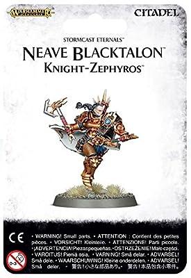 Stormcast Eternals Neave Blacktalon Warhammer Age of Sigmar by Games Workshop
