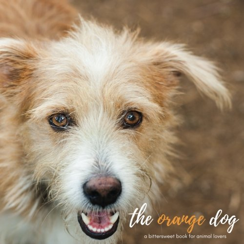 The Orange Dog: A bittersweet book for animal lovers (Children's Dog Books) (ages 9-12) pdf epub