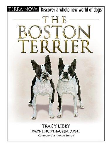 The Boston Terrier (Terra-Nova) -