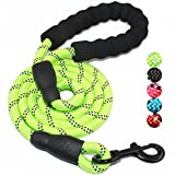 BAAPET 5 FT Strong Dog Leash with Comfortable Padded Handle and Highly Reflective Threads for Medium and Large Dogs (Green)