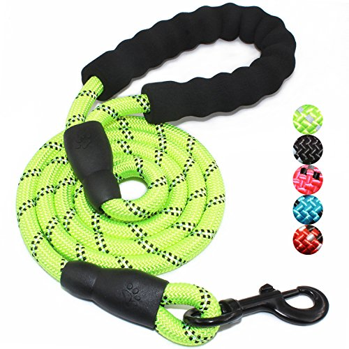 BAAPET 5 FT Strong Dog Leash with Comfortable Padded Handle and Highly Reflective Threads for Medium and Large Dogs - Dont Pull Rope