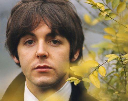 The Beatles Paul McCartney 14 x 11