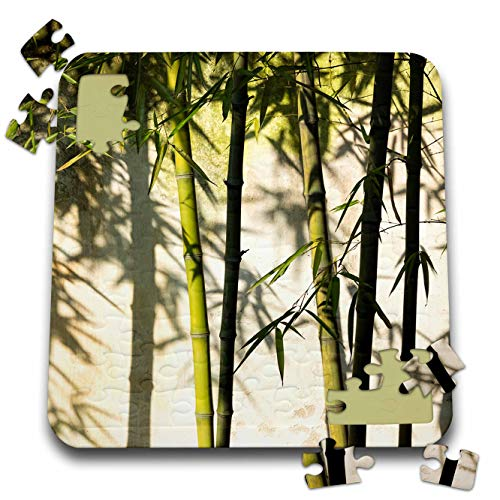 3dRose Danita Delimont - Patterns - Bamboo Casting Shadow on The Wall in Garden, Suzhou, Jiangsu, China - 10x10 Inch Puzzle - Suzhou China Jiangsu