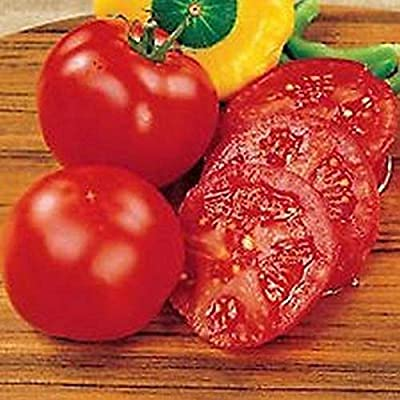 Early Doll F1 Hybrid Tomato Seeds-High yield of 4-5 ounce Fruit!(10 - Seeds) : Garden & Outdoor
