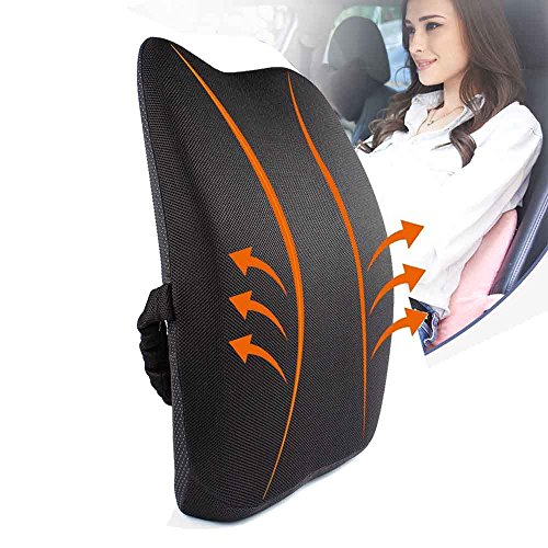 Meiz Breathable Lumbar Support Properly