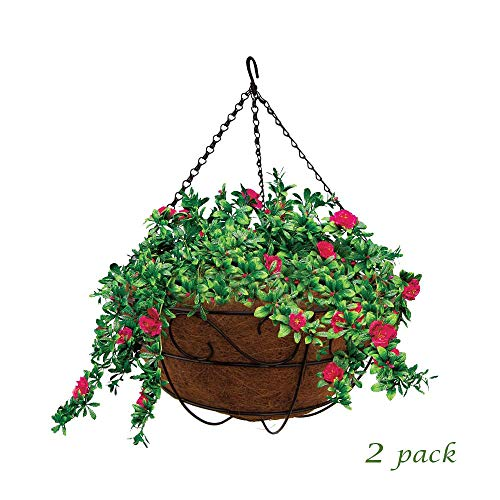 MTB Garden Hanging Baskets 16