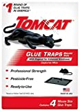 Tomcat Glue Traps Mouse Size with Eugenol for