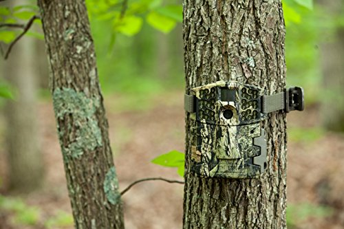Moultrie M-999i Mini Game Camera by Moultrie (Image #3)