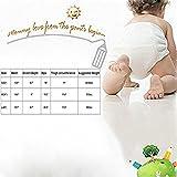October Elf Unisex Baby Toddler Potty Training