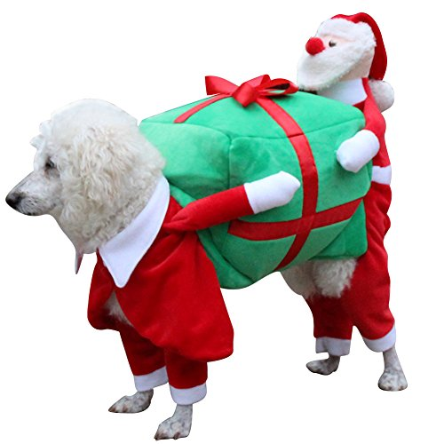 Amazon.com : DAMINFE Pet Christmas Clothes Santa Costume for Dogs, Winter  Puppy Dog Wear Christmas Suit Size S-XXL Carrying Gift Box Style Outwear  Coat ... - Amazon.com : DAMINFE Pet Christmas Clothes Santa Costume For Dogs
