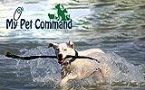 My Pet Command 1.25 Mile (6600 Ft) Dog Training