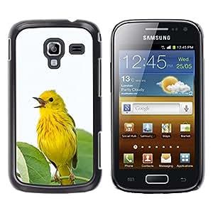 Amarillo Primavera pájaro deja Songbird- Metal de aluminio y de plástico duro Caja del teléfono - Negro - Samsung Galaxy Ace 2