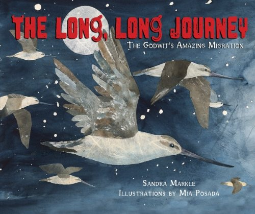 [The Long, Long Journey: The Godwit's Amazing Migration (Millbrook Picture Books)] (Animals That Begin With E)