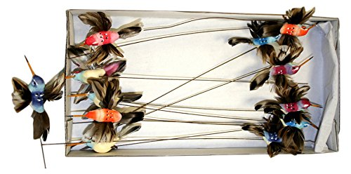 Reliant Ribbon Hummingbird Picks, Multicolor