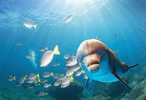lfeey 7 x 5ft under the sea BackdropブルーSea Underwater Marine Fishes Sharkビデオスタジオ写真背景小道具   B07D5D4DSJ