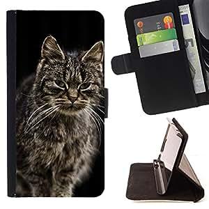 KingStore / Leather Etui en cuir / Samsung Galaxy S4 Mini i9190 / Gato noruego del bosque de Maine Coon de pelo largo