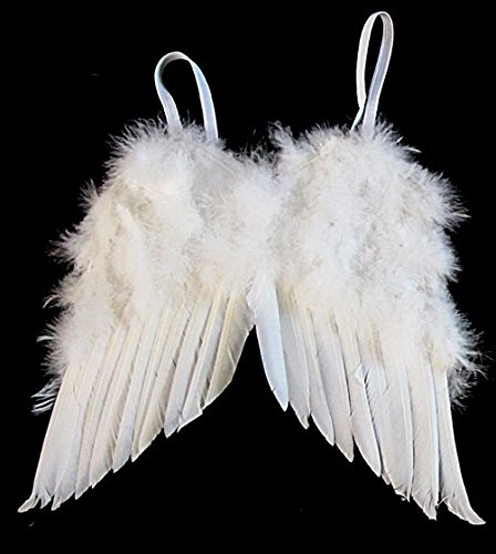 How to angel wear wings photos