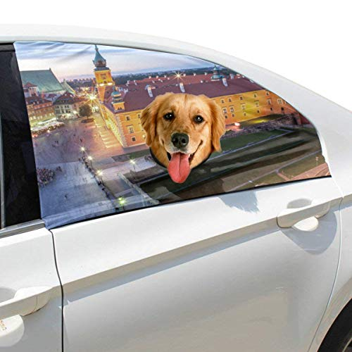 Liaosax Beautiful City Night Scene Foldable Pet Dog Safety Car Printed  Window Fence Curtain Barriers Protector for Baby Kid Adjustable Flexible  Sun