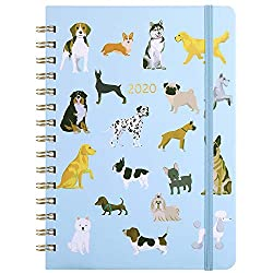 FeaturesAboutthis2020 planner An standard year planner January - December 2020 12 months of monthly pages with past and future monthly referencing 12 months of ample lined weekly pages with top priorities An overview of 2020-2021 calendar All 2020...
