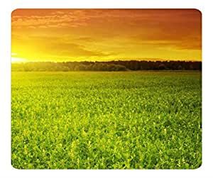 Decorative Mouse Pad Art Print Landscape and Plants Sunset Over Bean Field