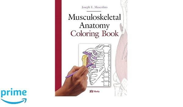 Musculoskeletal Anatomy Coloring Book - Joseph E. Muscolino ...