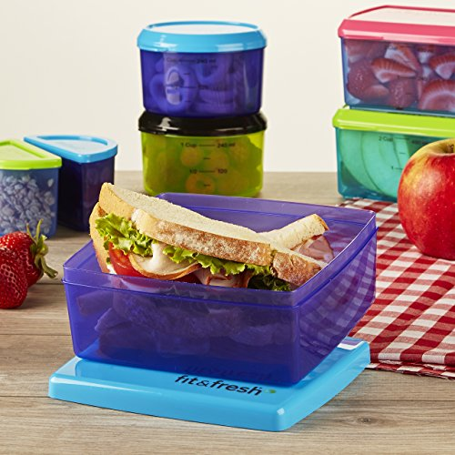 Fit & Fresh Kids Healthy Lunch Set, 17-Piece Value Reusable Portion Control Container Set with Removable Ice Packs and Sandwich Box, Leak-Proof, BPA-Free