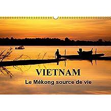 Vietnam Le Mekong source de vie 2019: Le Vietnam est traverse par le fleuve Mekong. Sur l'eau, sur les berges, la vie fourmille de toutes parts...