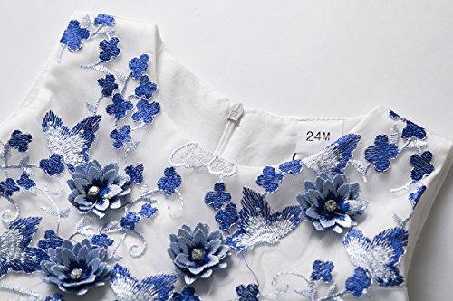 e3aa5ebc3 CIELARKO Baby Girls Dress 3D Flower Infant Christening Party Dresses ...