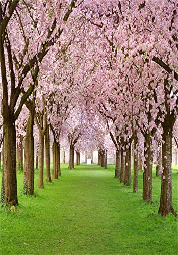 CSFOTO 6x8ft Background Blossoming Cherry Trees Along The Way Photography Backdrop Blurred Flower Trees Groves Road Spring Season Garden Holiday Vacation Photo Studio Props Vinyl Wallpaper -