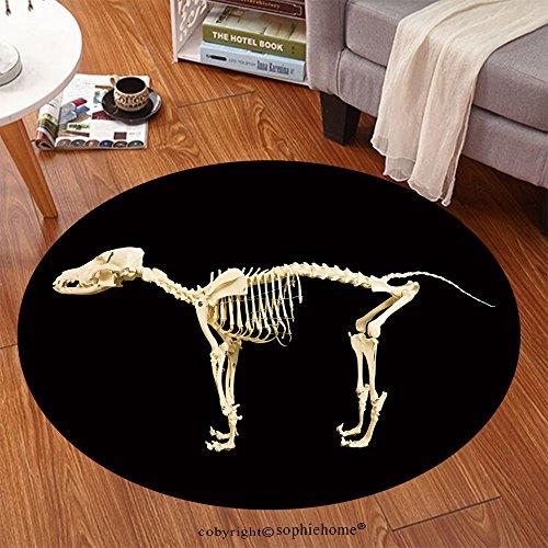 Sophiehome Soft Carpet 191410955 Dog skeleton model on black background Anti-skid Carpet Round 34 (Mary Poppins Dog Costume)