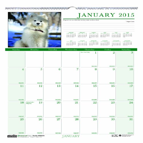 Earthscapes Puppies Wall Calendar (House of Doolittle Earthscapes Puppy Wall Calendar 12 Months, January 2015 to December 2015, 12 x 12 Inches, Full Color Photo, Recycled (HOD3651-15))