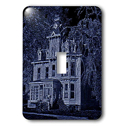 3dRose Sandy Mertens Halloween Designs - Scary Looking House in the Midnight Light - Light Switch Covers - single toggle switch -