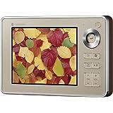 TOSHIBA gigabeatVシリーズ ワンセグ視聴と録画/再生機能搭載 フラッシュメモリ4GB内蔵 SD/SDHCカード対応オーディオプレーヤー MEV41(N) シャンパンゴールド