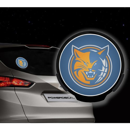 (Rico Industries Pwr69001 Rico Charlotte Bobcats Power Decal)
