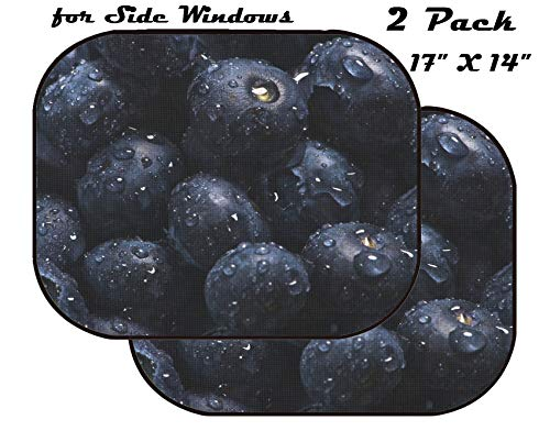 MSD Car Sun Shade for Side Window - UV Protector for Baby and Pet - Block Sunlight - Image of Fruit Healthy Sweet Background Berry Blue Macro Food Fresh Closeup Juicy Natural Nature ripe Isolated