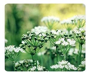 Decorative Mouse Pad Art Print Landscape and Plants Summertime 4
