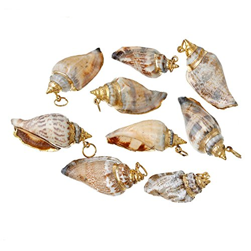 Charm Conch Shell Pendants Gold Plated with Hole Findings Jewelry Making Craft DIY (Shells Cone Pendants Jewelry)