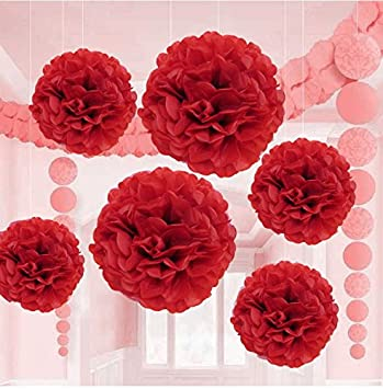 Amazon valentine red tissue paper flower pom pom balls12 and valentine red tissue paper flower pom pom balls12 and 14 inch holiday party favor mightylinksfo Choice Image