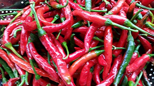 New Zealand's Famous Kaitaia Fire Chili Pepper Hot Sauce Made with Organically Grown Cayenne Chilis Pack of 3 bottles by Kaitaia Fire (Image #8)