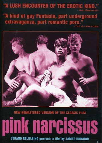 Pink Narcissus by Strand Releasing