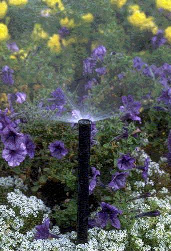 "Rain Bird 1812AP Professional Pop-Up Sprinkler, Adjustable 0° - 360° Pattern, 8' - 15' Spray Distance, 12"" Pop-up Height"