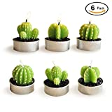 JoinPro 6Pcs Plant Candles Non-spilling Mini Cute Tealight Cactus Candles Handmade Delicate Decor Candles for Birthday Party Wedding Home Decoration