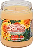 Smoke Odor Exterminator 13oz Jar Candles Autumn Mum, Pack of 2