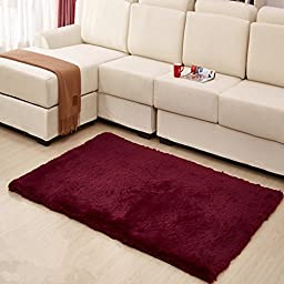 Hughapy Home Decorator Modern Shag Area Rugs Super Soft Solid Living Room Carpet Bedroom Rug and Carpets,80 120cm (Purplish red)