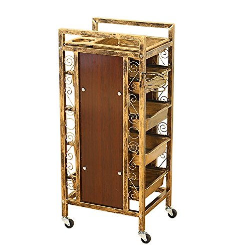 SalonTrolley 4 Drawers Classic Roller Storage Hairdressing Tray Spa Hair Style Beauty Barber Cart With Hair Dryer Rack by SalonTrolley