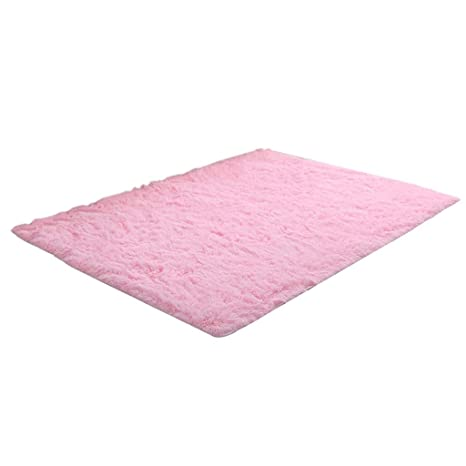 Amazon.com: PPY1818 Area Rugs Ultra Soft Fluffy Thick Indoor ...