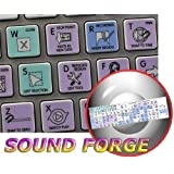 SONY SOUND FORGE GALAXY SERIES NEW KEYBOARD LABELS APPLE SIZE by 4Keyboard
